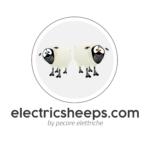 Pecore Eletriche Snc